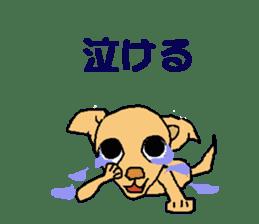 Chihua-tan of chihuahua sticker #7089571