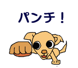 Chihua-tan of chihuahua sticker #7089577
