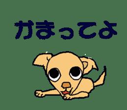 Chihua-tan of chihuahua sticker #7089578