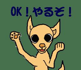 Chihua-tan of chihuahua sticker #7089583