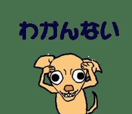 Chihua-tan of chihuahua sticker #7089589