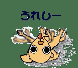 Chihua-tan of chihuahua sticker #7089594