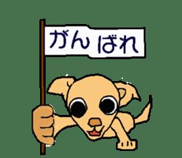 Chihua-tan of chihuahua sticker #7089596