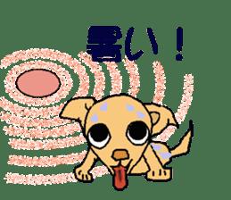 Chihua-tan of chihuahua sticker #7089597