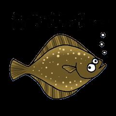 Fish picture book 2