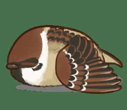 fat sparrow sticker #7136505