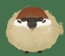 fat sparrow sticker #7136520
