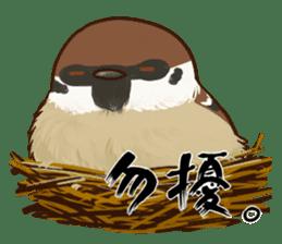 fat sparrow sticker #7136527