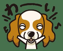 iinu - Cavalier King Charles Spaniel sticker #7147930