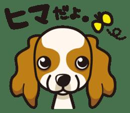 iinu - Cavalier King Charles Spaniel sticker #7147936