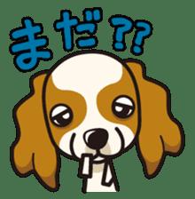 iinu - Cavalier King Charles Spaniel sticker #7147939