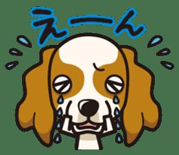 iinu - Cavalier King Charles Spaniel sticker #7147942