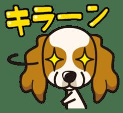 iinu - Cavalier King Charles Spaniel sticker #7147955
