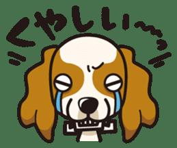 iinu - Cavalier King Charles Spaniel sticker #7147956