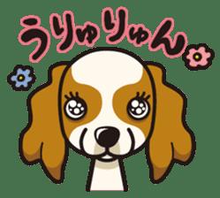 iinu - Cavalier King Charles Spaniel sticker #7147958