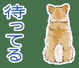 6 kinds of Japanese dog sticker sticker #7151561