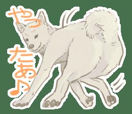 6 kinds of Japanese dog sticker sticker #7151574