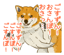 6 kinds of Japanese dog sticker sticker #7151578