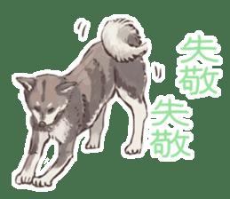 6 kinds of Japanese dog sticker sticker #7151585
