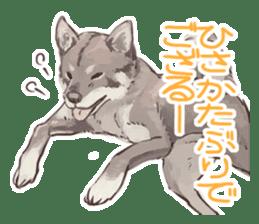 6 kinds of Japanese dog sticker sticker #7151586