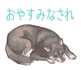 6 kinds of Japanese dog sticker sticker #7151589