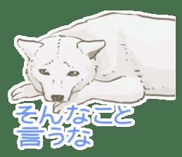 6 kinds of Japanese dog sticker sticker #7151593