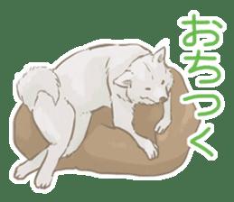 6 kinds of Japanese dog sticker sticker #7151595