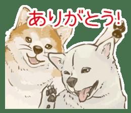 6 kinds of Japanese dog sticker sticker #7151597