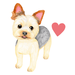 Yorkie Sticker (English)