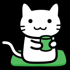 Memories cat