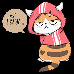 Soidow cat (Thai v.)