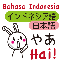 Indonesian rabbit