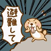 สติ๊กเกอร์ไลน์ Rakko-san Emergency version