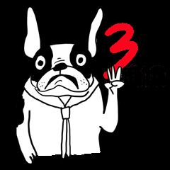 3 GAG