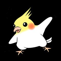 Feelings of Cockatiel (English)