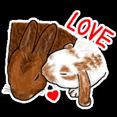 Our beloved rabbit (English version)