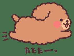 fluffy toy poodle 3set sticker #7274420