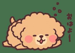 fluffy toy poodle 3set sticker #7274431
