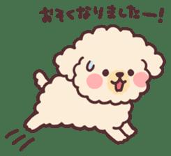 fluffy toy poodle 3set sticker #7274439