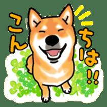 ShibaInu ZANMAI sticker #7281177