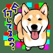 ShibaInu ZANMAI sticker #7281180