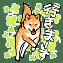 ShibaInu ZANMAI sticker #7281182