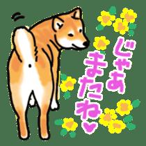 ShibaInu ZANMAI sticker #7281190