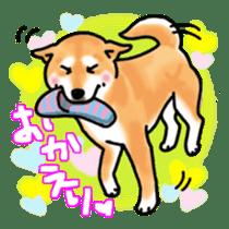 ShibaInu ZANMAI sticker #7281191