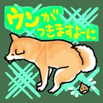 ShibaInu ZANMAI sticker #7281192