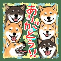 ShibaInu ZANMAI sticker #7281193
