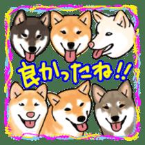 ShibaInu ZANMAI sticker #7281194