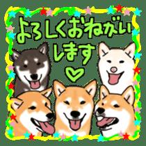 ShibaInu ZANMAI sticker #7281195
