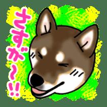ShibaInu ZANMAI sticker #7281198