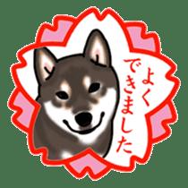 ShibaInu ZANMAI sticker #7281210